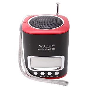 Портативная стерео аудио колонка WSTER с MP3  и FM тюнером WS-259 black