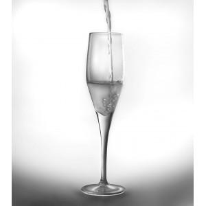 Набор 6пр бокалов для шампанского 215мл CooknCo Casa